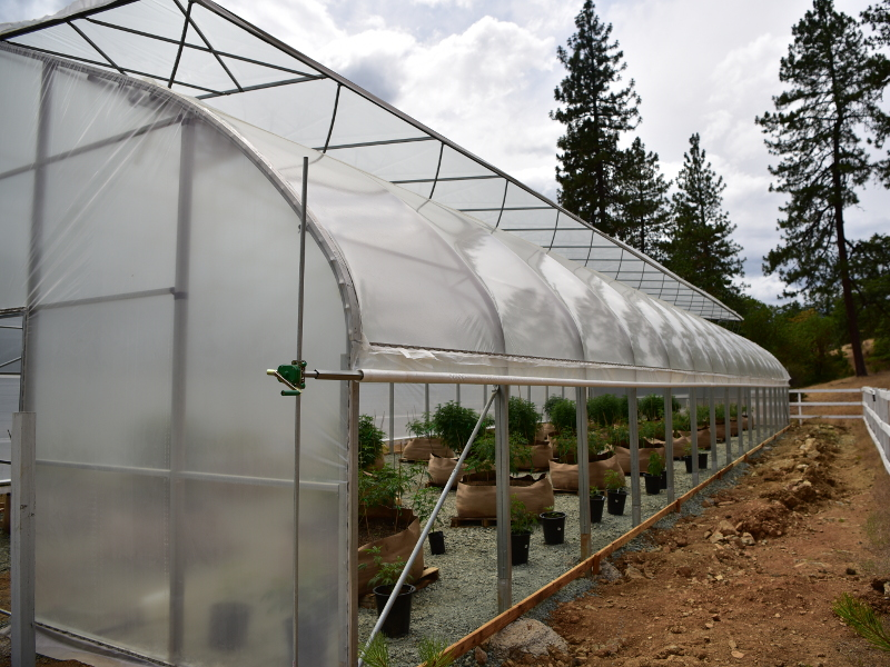 Natural Ventilation Evolve Greenhouse Systems